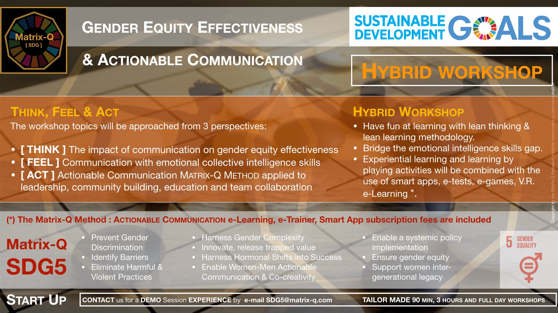 Matrix-Q SDG5 Start-Up Gender Equity Effectiveness.002